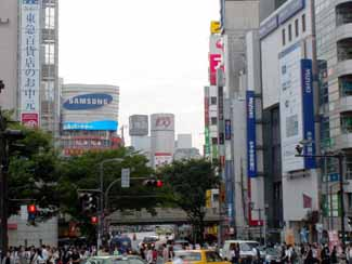 Miyamasuzakashita1