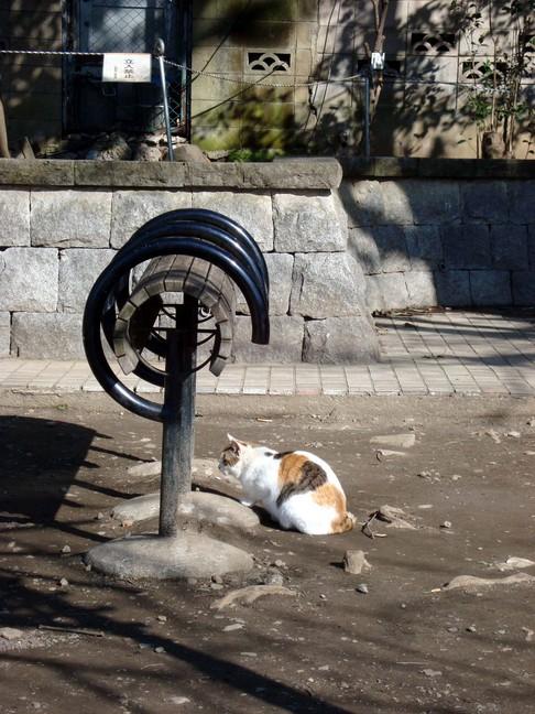 Ueno_cat4